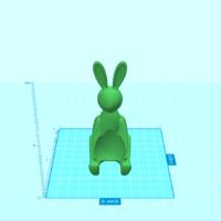Bunny Cover Photo