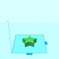 Polaroid Star Image