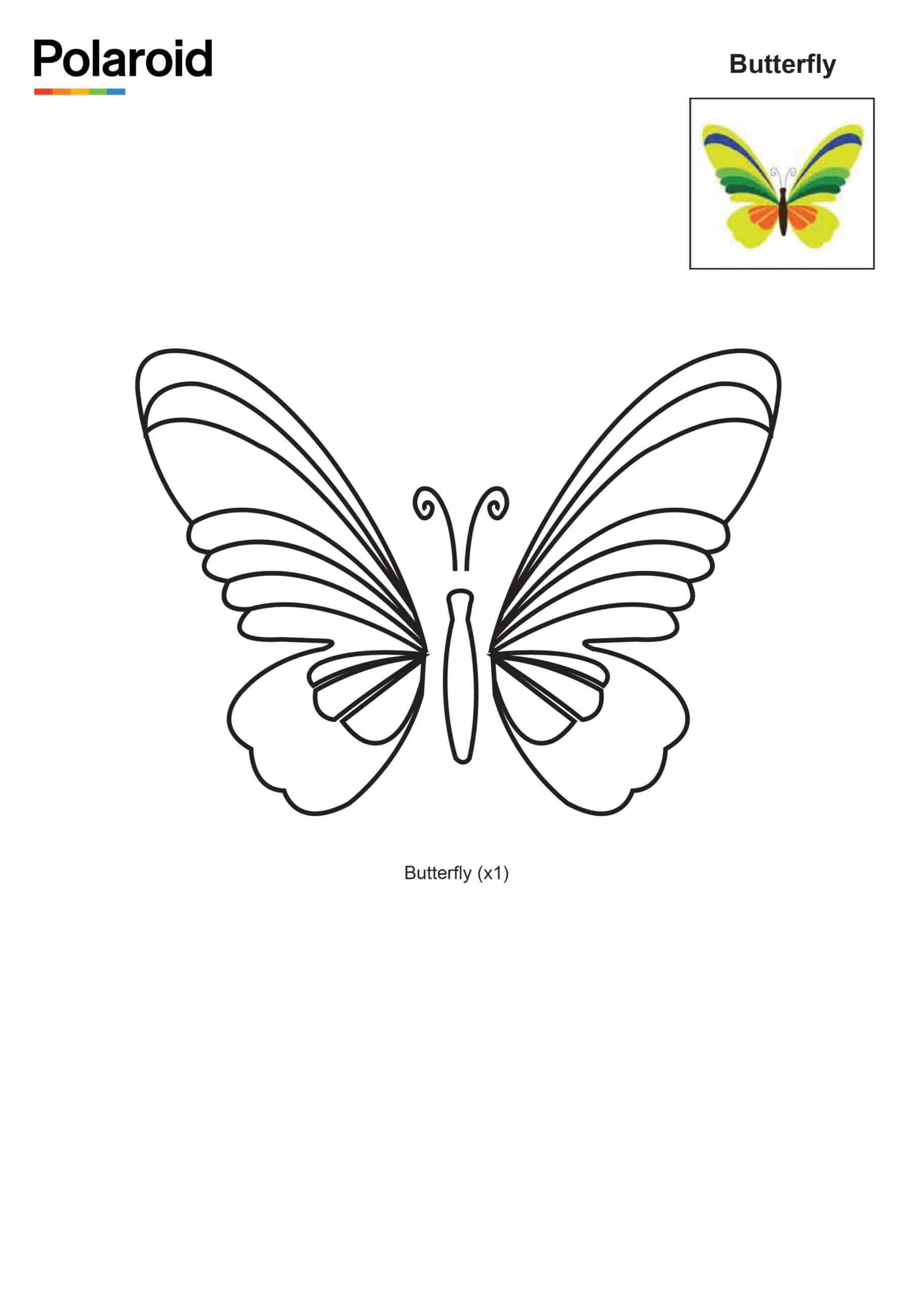 Butterfly_New Logo