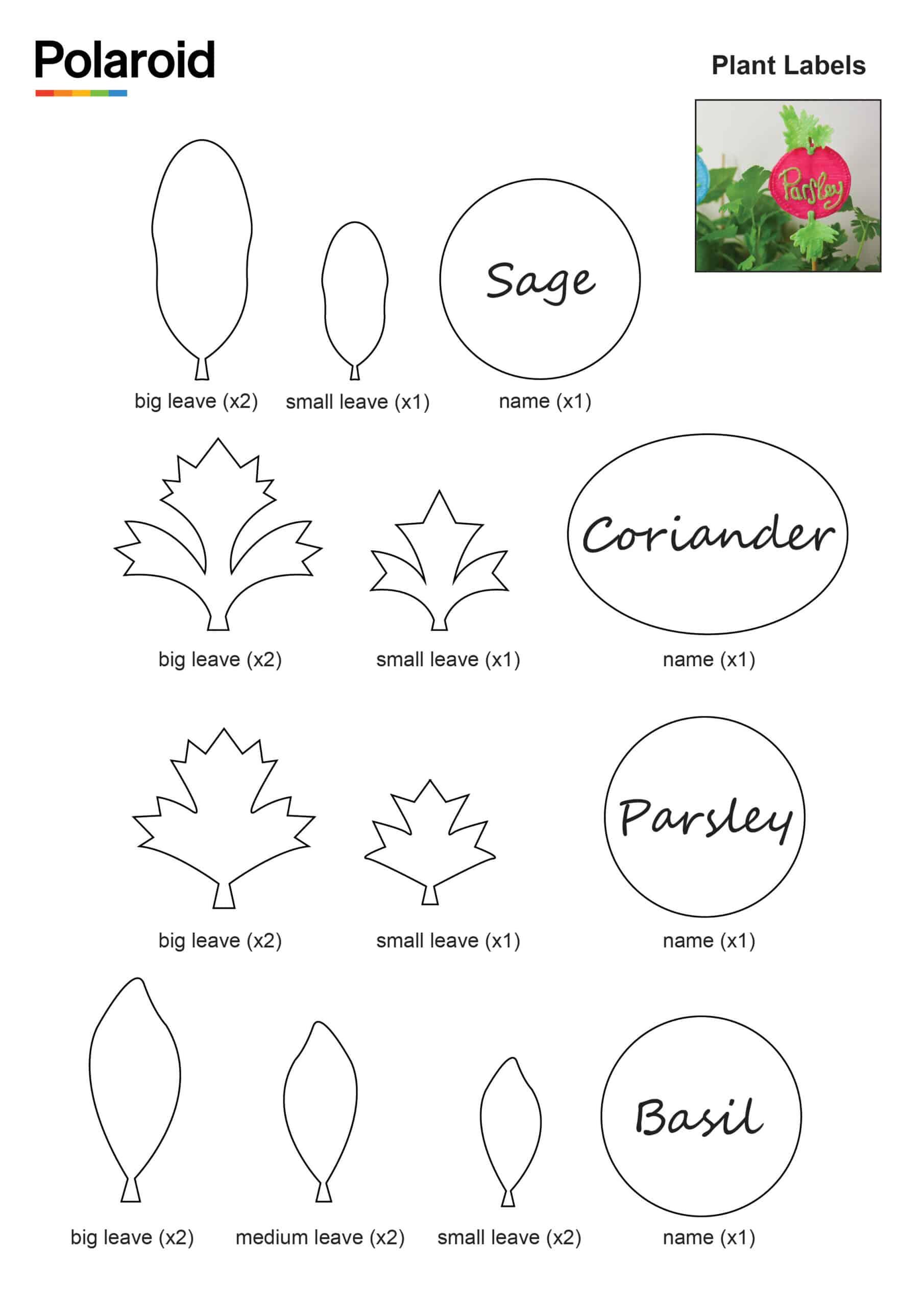 Plant Labels_New Logo